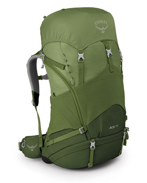 Ace 75 in Venture Green O/S