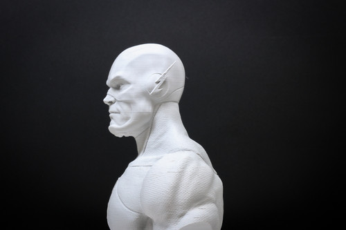 The Flash Paintable Bust