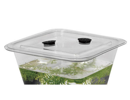 American Educational Products 1 Gallon Nasco Flex-Tank Cover Box of 50 - Clear