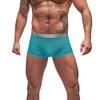 Male Power See Through Mesh Rib Mini Short