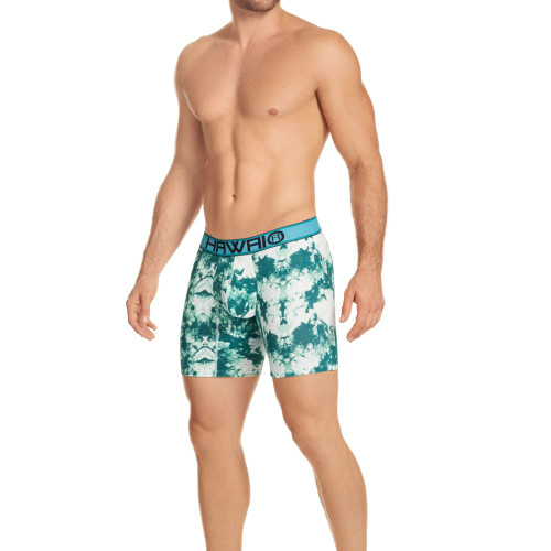 Mens Underwear - Front view of HAWAI Underwear Printed Classic Cotton Boxer Briefs - Mens Underwear