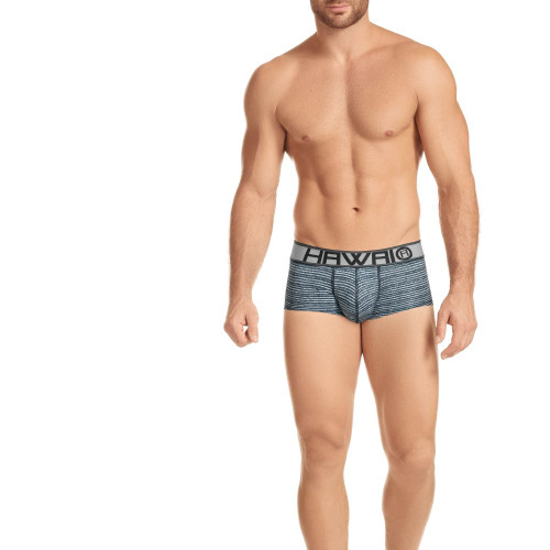 Mens Underwear - Front view of HAWAI Striped Full Briefs - Fuller Fitting Mens Brief With Striped Pattern