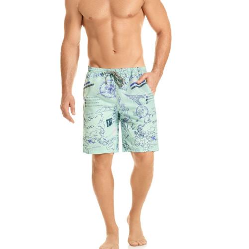 Mens Underwear - Front view of HAWAI Traveller Boardshort Swim Trunks