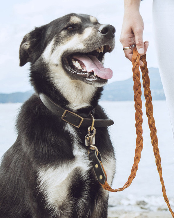 The Bohemian Braided Leash