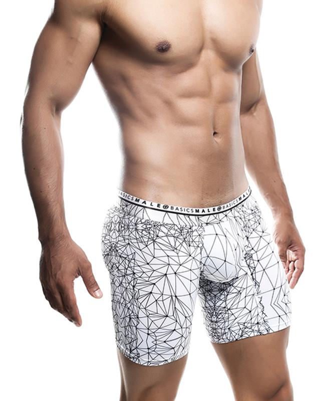 Male Basics Spider Hipster Boxer Brief White/black Lg