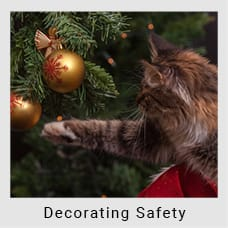 Safety Tips for Decorating During Christmas