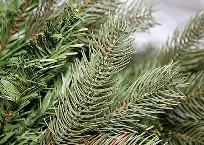 Tree Resources