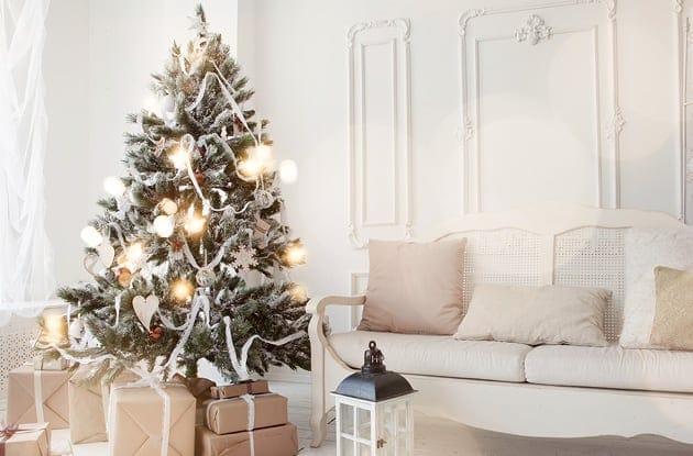 Indoor Traditional Christmas Tree Display
