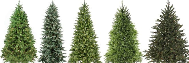 Type Of Christmas Trees.How To Pick The Right Christmas Tree