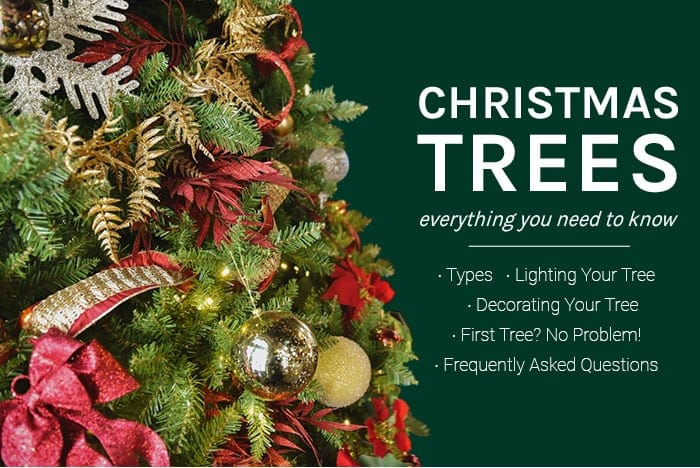Christmas Trees | everything you need to know | Types - Lighting Your Tree - Decorating Your Tree - First Tree? No Problem! | Frequently Asked Questions