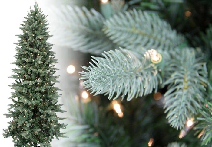 Washington Frasier Christmas Tree Photos