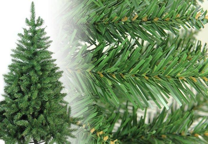 Buffalo Fir Christmas Tree Photos
