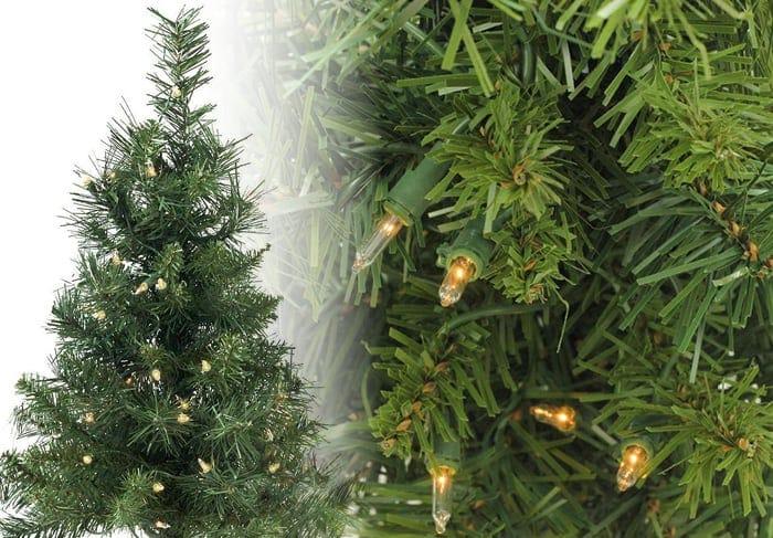 Royal Pine Christmas Tree Photos