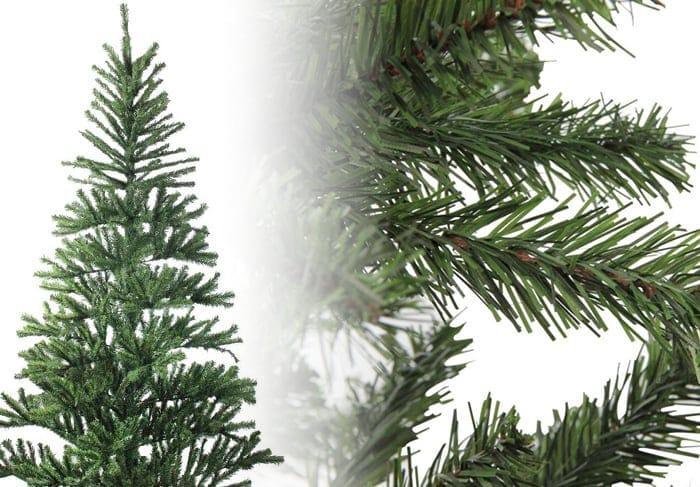 Canadian Pine Christmas Tree Photos