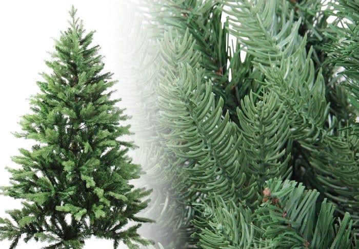 Coniferous Pine Christmas Tree Photos