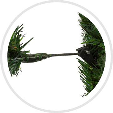 Angel Pine Branch