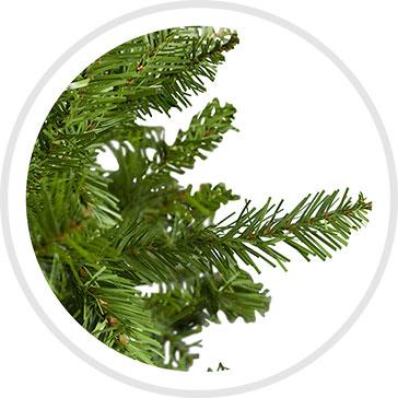 Northern Pine Branch