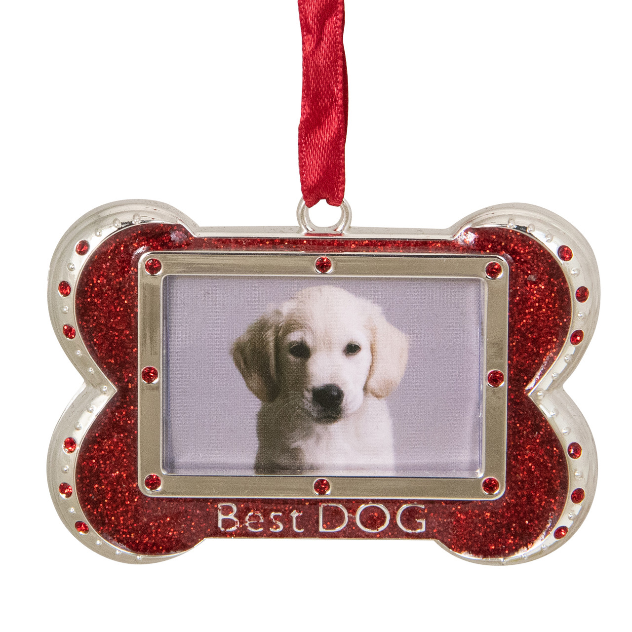 3 Regal Shiny Silver Plated Red Best Dog Bone Picture Ornament With European Crystals Christmas Central