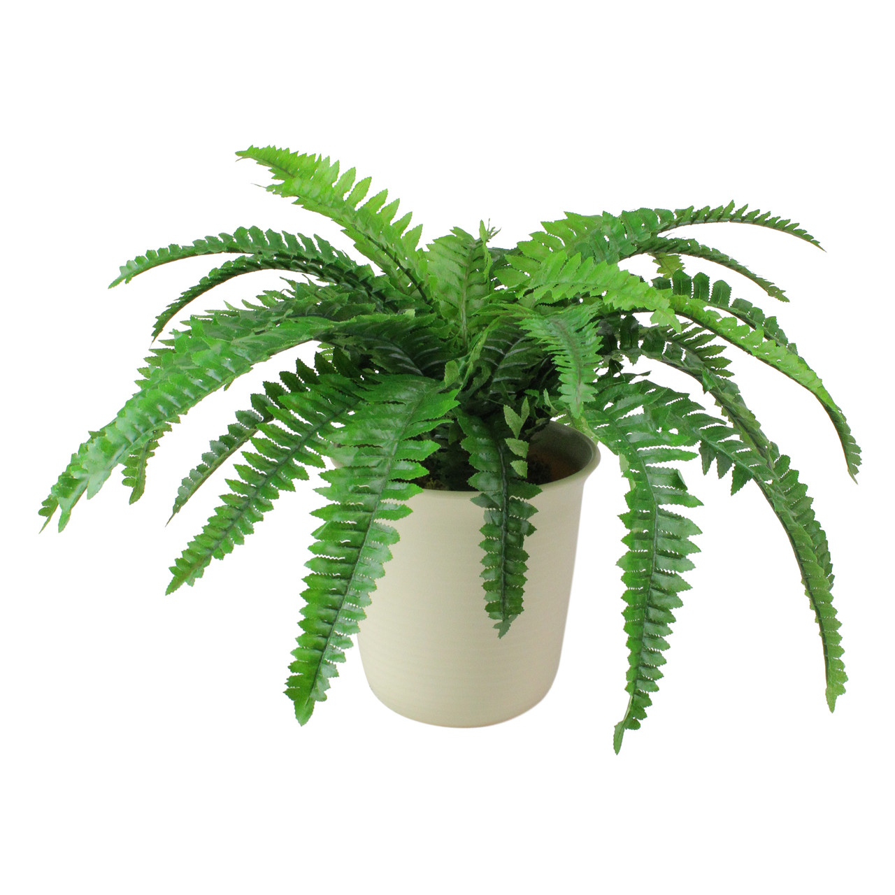 21 Green Cream White Boston Fern Artificial Potted Plant Christmas Central
