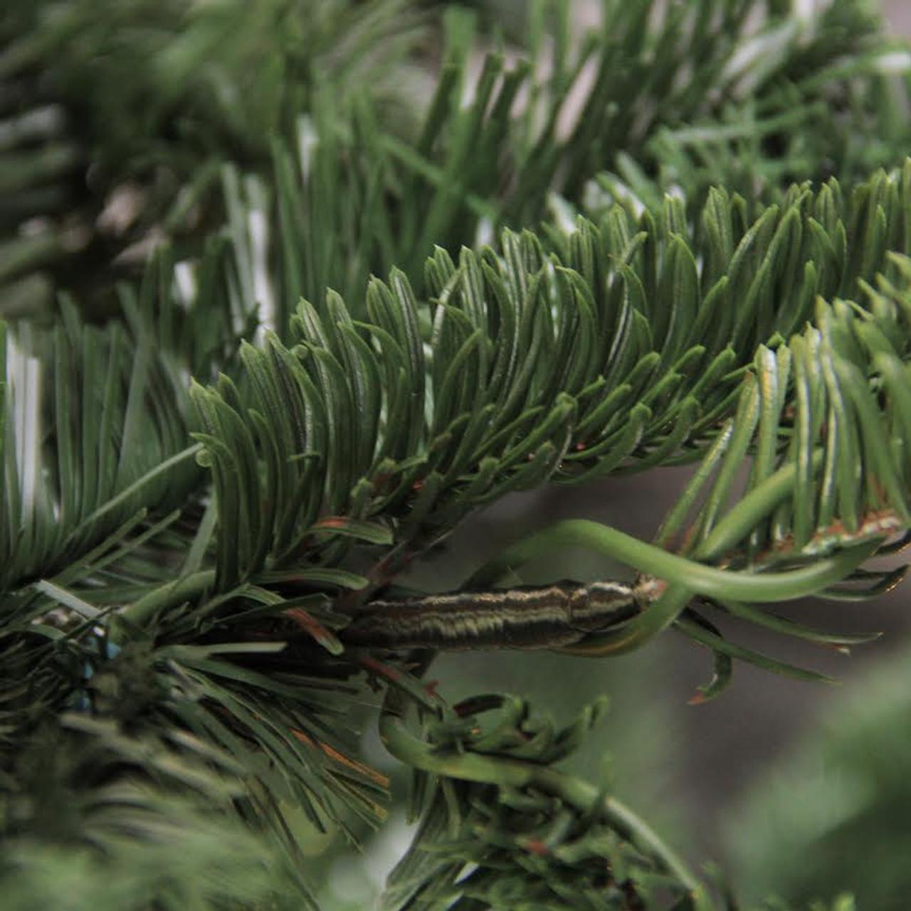 6.5' Layered Noble Fir Artificial Christmas Tree - Unlit ...