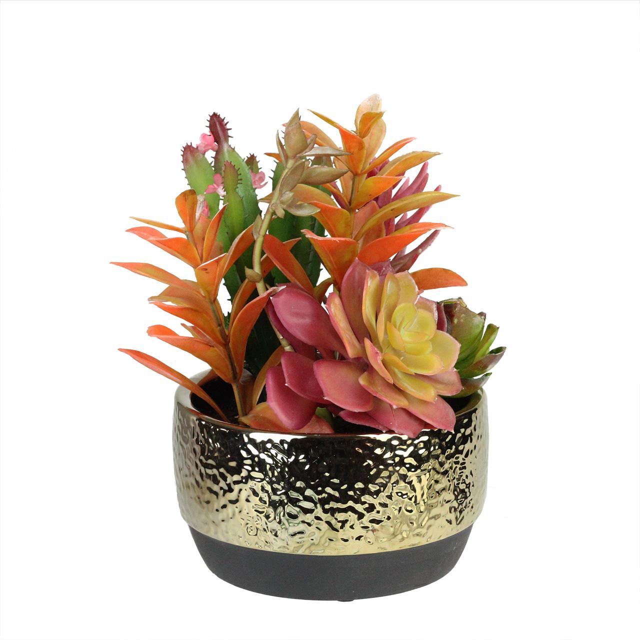 8 5 Artificial Succulent Arrangement In Gold Ceramic Pot Christmas Central