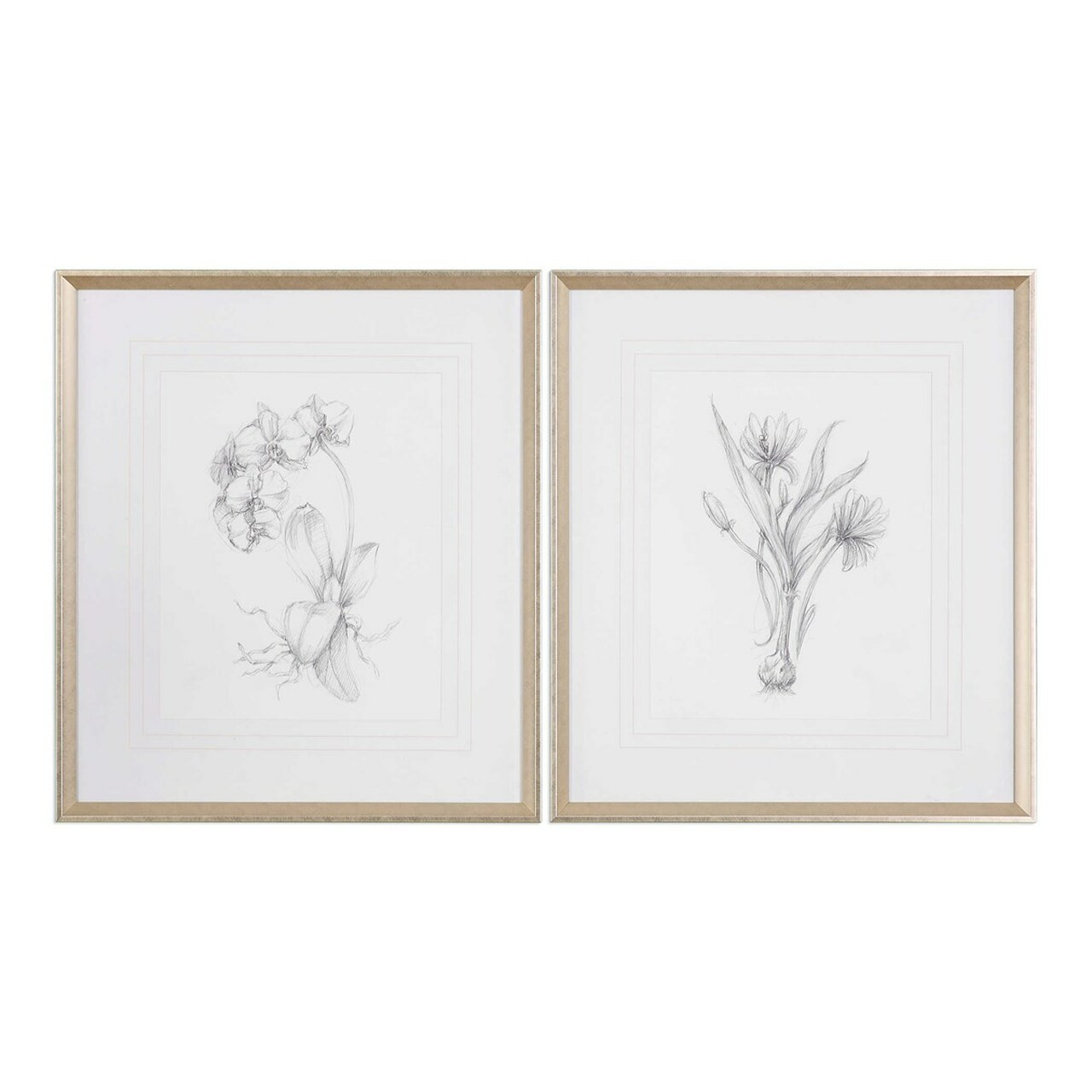 Set of 2 botanical sketches framed prints 32 33378686 diva at home