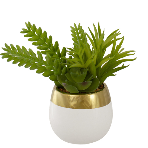 "6.5"" Potted Mixed Artificial Succulent Arrangement - IMAGE 1"