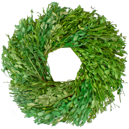 Green Foliage Artificial Spring Wreath, 11-Inch - IMAGE 1