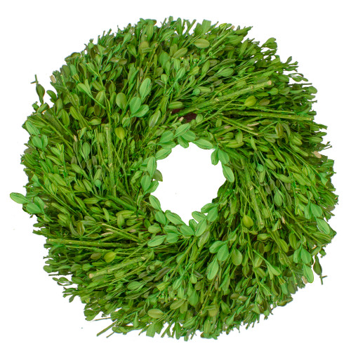 Green Foliage Artificial Spring Wreath, 10-Inch - IMAGE 1
