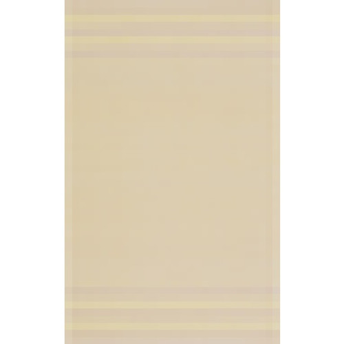 5' x 8' Beige Hand-Woven Rectangular Area Throw Rug - IMAGE 1