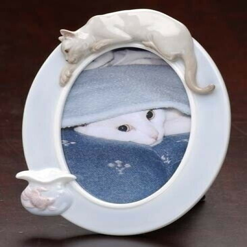 """Club Pack of 12 White Siamese Cat and Fish Oval Photo Frames 8"""" - IMAGE 1"""