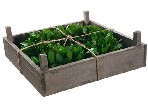 Bay Leaf Artificial Wreath in Rustic Frame Box, Green 14-Inch - IMAGE 1