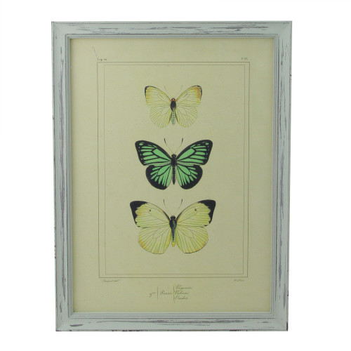 """Yellow and Green Butterfly Print Rectangular Wall Art 15.75"""" x 12"""" - IMAGE 1"""