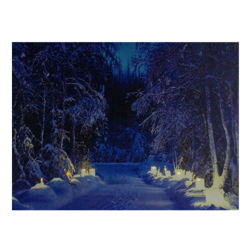 """LED Lighted Nighttime in the Woods Winter Scene Canvas Wall Art 15.75"""" - IMAGE 1"""