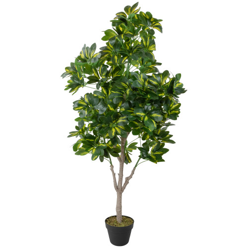 """49"""" Green and Black Potted Two Tone Schefflera Artificial Plant - IMAGE 1"""