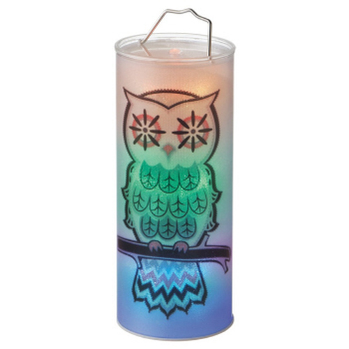 """12"""" Clear and Black Battery Operated Owl LED Lighted Hanging Halloween Lantern - IMAGE 1"""