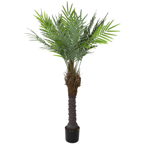 """58.5"""" Potted Green and Brown Phoenix Palm Artificial Tree - Unlit - IMAGE 1"""