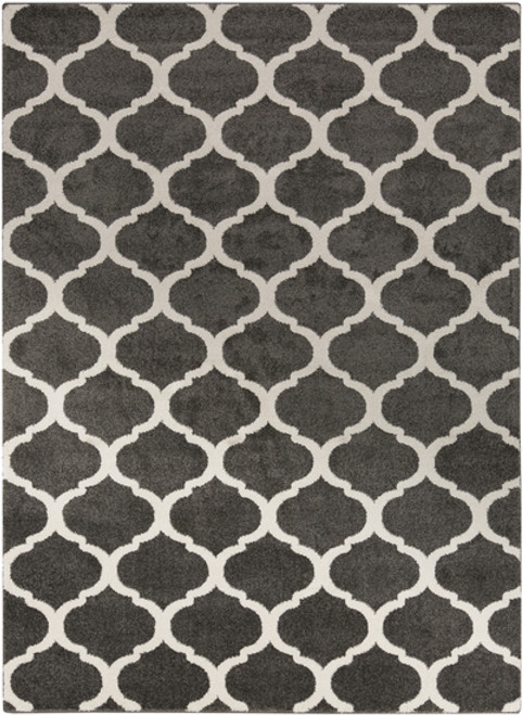 3.25' x 5' Celestial Gem Silhouette Charcoal Gray and Cream White Shed-Free Area Throw Rug - IMAGE 1