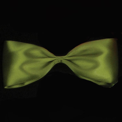 """Soft Pine Green Double Face Craft Ribbon 1"""" x 108 Yards - IMAGE 1"""