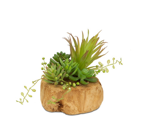 """6.5"""" Green and Brown Artificial Succulent Arrangement in a Driftwood Style Planter - IMAGE 1"""