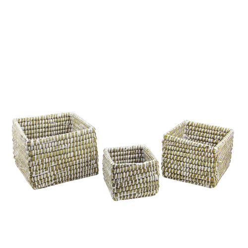 """Set of 3 Green and White Rivergrass Square Storage Baskets 10"""" - IMAGE 1"""