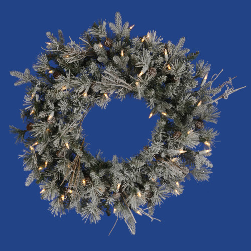 Pre-Lit Frosted Whistler Fir Artificial Christmas Wreath - 24-Inch, Clear Dura-Lit Lights - IMAGE 1