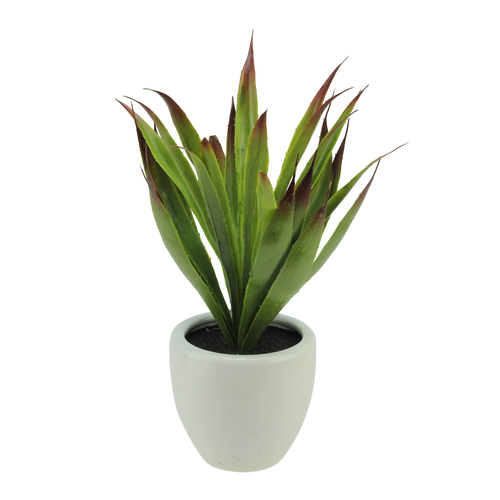 """13.5"""" Potted Artificial Green and Red Agave Succulent Plant - IMAGE 1"""