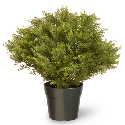 """24"""" Artificial Green Globe Juniper Bush with Weighted Round Pot - IMAGE 1"""