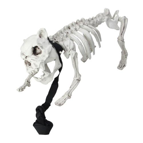 "16"" Gray and Black Dog Skeleton on Leash Outdoor Halloween Decor - IMAGE 1"