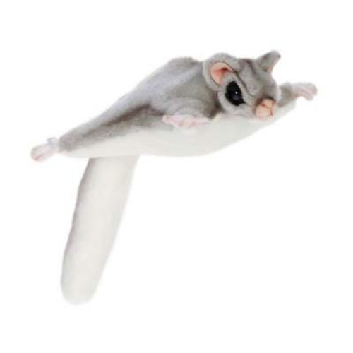"Set of 4 Gray and Black Handcrafted Plush Sugar Glider Stuffed Animals 9"" - IMAGE 1"