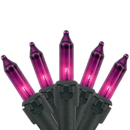 35-Count Purple Mini Christmas Lights, 7ft Black Wire - IMAGE 1