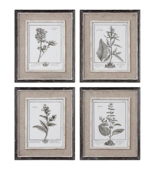 "Set of 4 Botanical Flower Study Prints Wall Art 18"" - IMAGE 1"