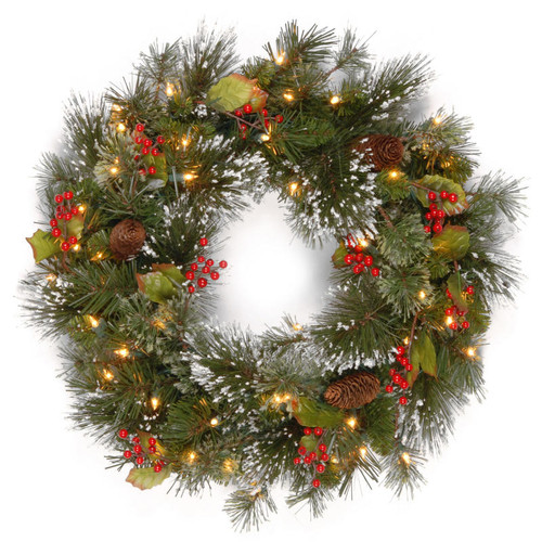 """24"""" Pre-Lit Wintry Pine Artificial Christmas Wreath - Clear Lights - IMAGE 1"""