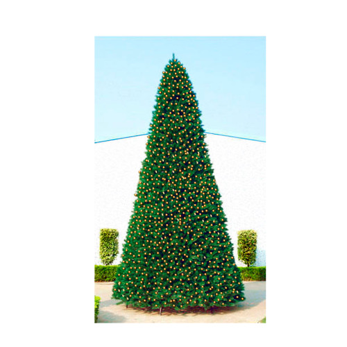 Pre Lit Christmas Tree Fuses: 40' Giant Pre-Lit Everest Fir Commercial Christmas Tree